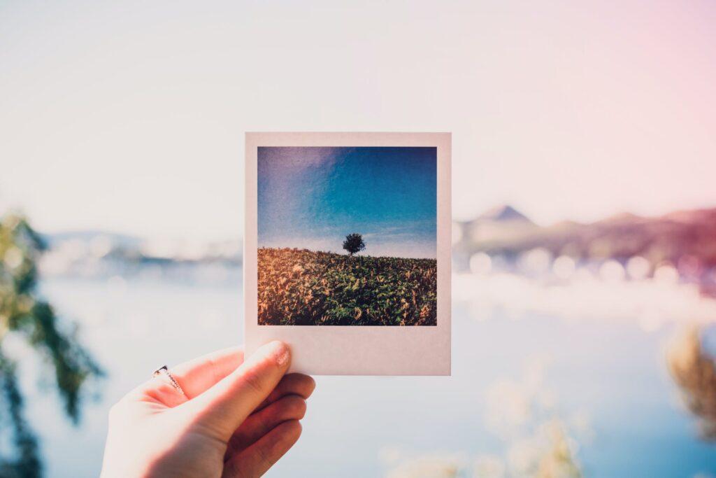 Proffsiga bilder gör bloggen populär